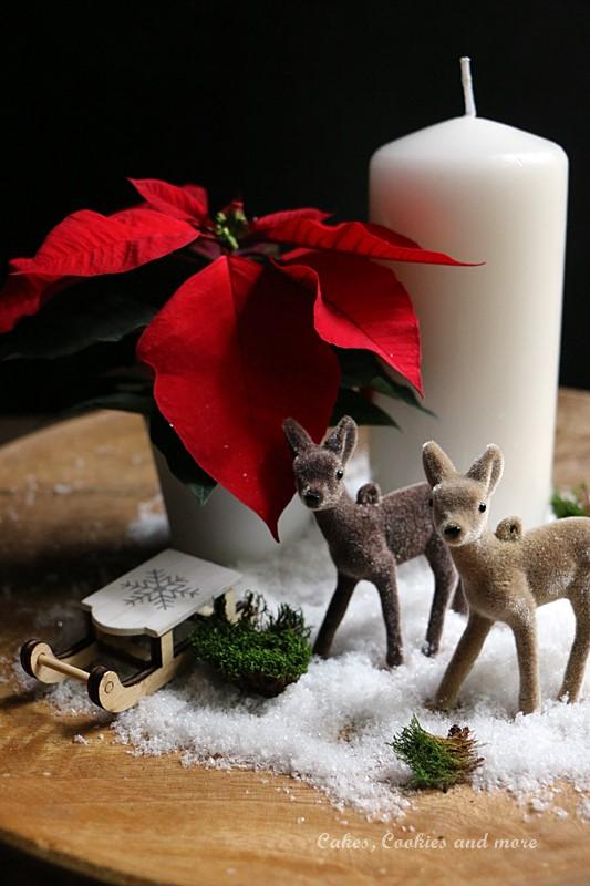 Weihnachtliche Winterlandschft mit Weihnachtsstern